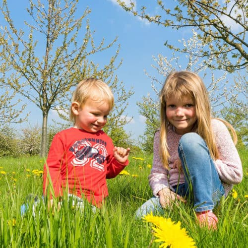 children spring outdoor play