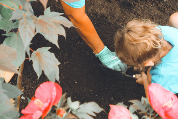 Planting Dialogues